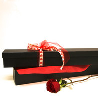 Single red rose presented in a elegant black box.