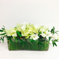 Pure Blooms in Glass Oblong Vase