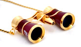 Opera Glasses- Burgundy w/ Chain + Flashlight