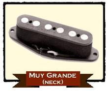 Rio Grande Muy Grande Neck RWRP - Tele