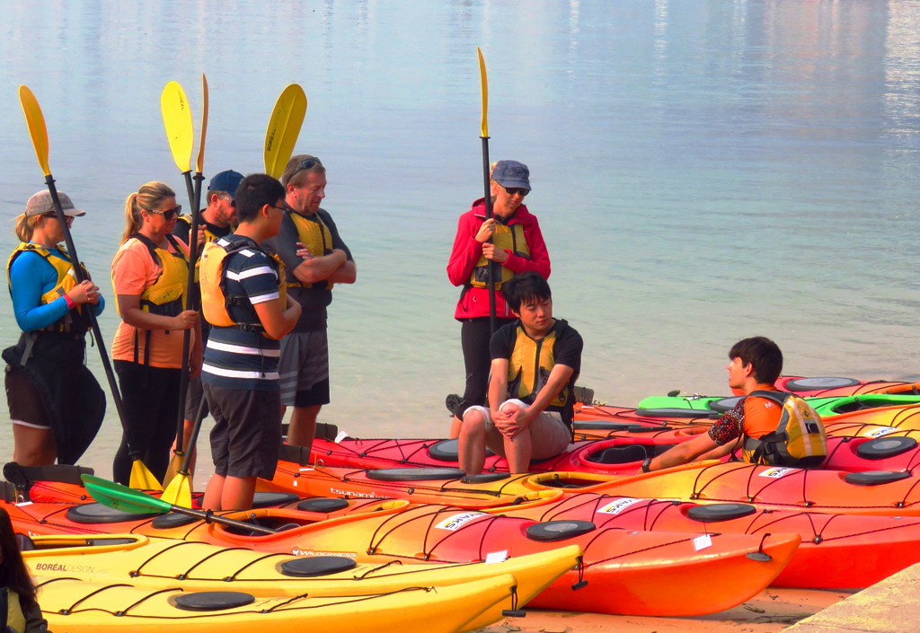 learn-to-kayak-lesson-with-coop-paddlers-on-beach.jpg