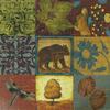 Bear Collage
