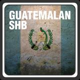 Guatemalan SHB E/P : Green Beans