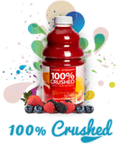 Dr. Smoothie 100% Crushed Fruit Concentrate (46 fl. oz)