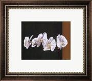 Orchid Study I - Ann Parr