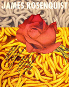 Dynamic Rosenquist-The National Gallery of Canada-SIGNED