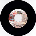 Dennis Brown, Luciano, Hopeton Lindo...Your World My World 7""