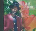 Larry Marshall : Walk You To Your Door CD