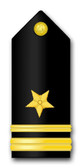 Navy Lieutenant Junior Grade Vinyl Transfer Decal
