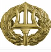 Command Ashore Badge