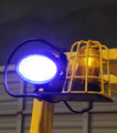 EW2000BH blue safety light