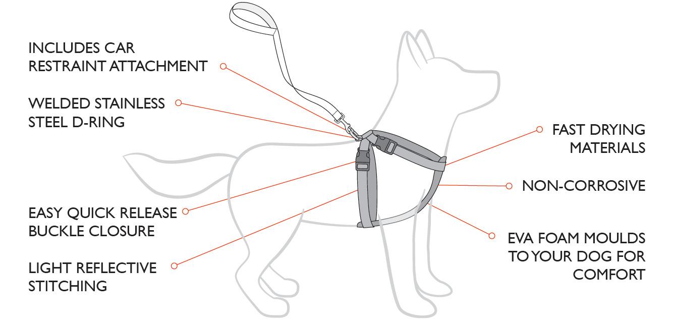 Make Dog Harness Out Webbing