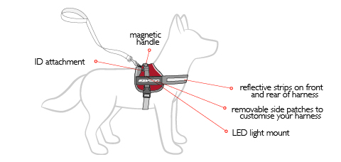 convert-harness-diagram.jpg