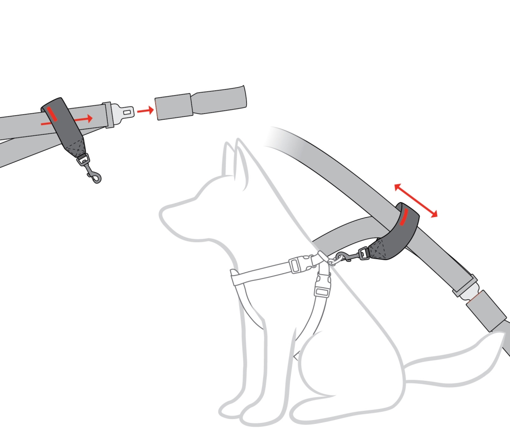 optimized-seat-belt-restraint-diagram.jpg