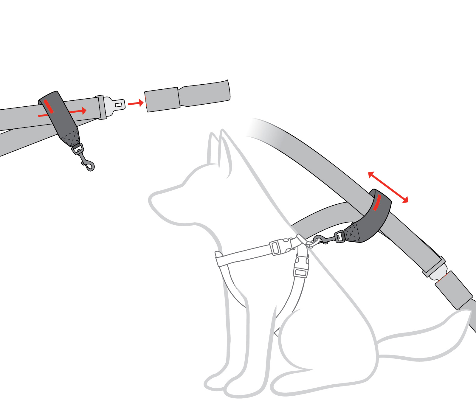 seat-belt-restraint-diagram.jpg