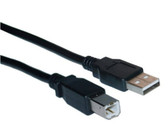 10-Feet USB 2.0 A Male To B Male - Black