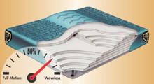 Nordic 6 with Lumbar Hardside Waterbed