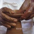 SURRENDER  by David Kauffman