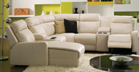 Forest Hill Leather Sectional