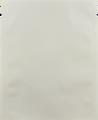 WDP-101.MW matte white drip pocket