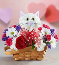 Flirty Feline