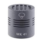 Schoeps MK 41 Capsule Image at ZenProAudio.com