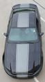 2013-2014 Ford Mustang Venom Graphic Kit
