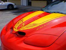 Pontiac Firebird Rally Bird Graphic Kit 99968