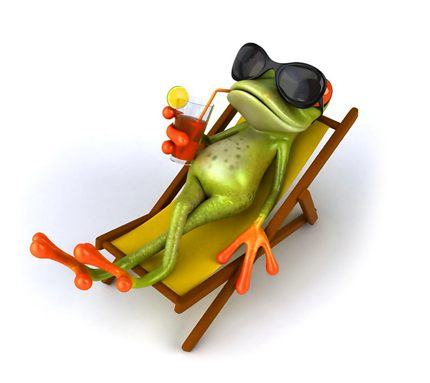 chill-out-frog.jpg