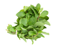 Herb Mint-  Bunch *Aquaponically Grown. Chemical Free*