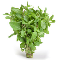 Herb MINT- Bunch *Chemical Free. Aquaponic*