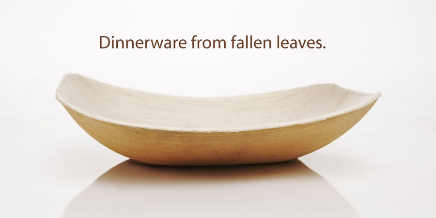 Verterra Palm Leaf Plates