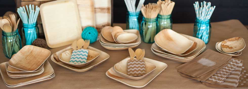 Eco Friendly Disposable Dinnerware : recycled plates disposable - pezcame.com