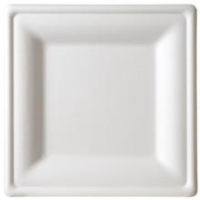 Sugarcane Plate - Square 10 inch