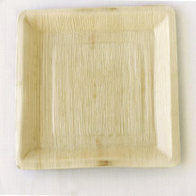 Palm Leaf Plates - 9.5 in Square