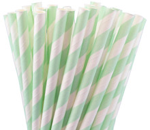 Paper Straws - Mint Green Stripes