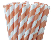 Paper Straws - Cantaloupe Orange Stripes