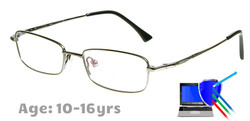 Boston - Titanium Prescription Glasses in Silver