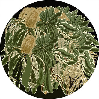 Art Decals - Banksia