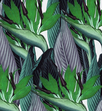 Fabric - Strelitzia -Green