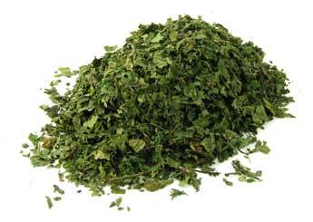 nettle-leaf.jpeg