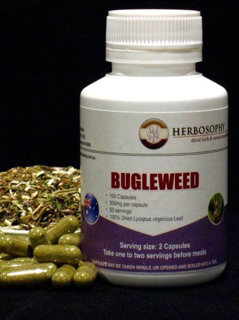 Bugleweed Loose Herb, Powder or Capsules @ Herbosophy