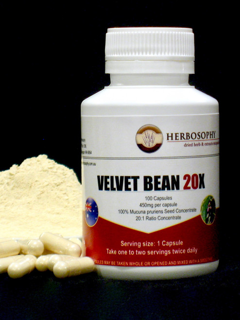 Mucuna 20:1 Extract Capsules & Loose Powder @ Herbosophy