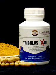 Tribulus X40 Extract Powder & Capsules @ Herbosophy