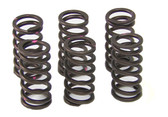 Kawasaki HD Clutch Springs