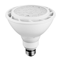 LED PAR38 18Watt 5000K DayLight Dimmable