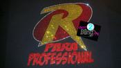 Robin Paraprofessional