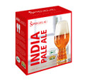 SPIEGELAU IPA Glass Designed by Dogfish Head and Sierra Nevada! - 4 Glasses