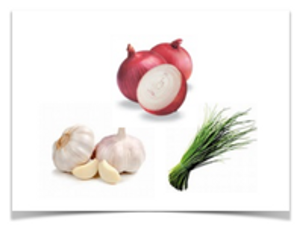 Dog Safety - NO ONIONS, GARLIC or CHIVES
