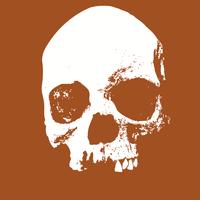 image free vector logo graphic skull